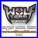 Wolfteam Promo Kodunuz