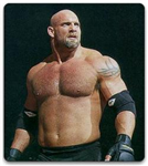 Which Wwe Legend Are You?