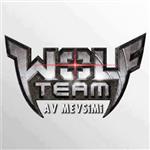Wolfteam Cevapla Kazan 2