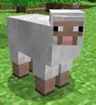 Hangi Minecraft Hayvanısın