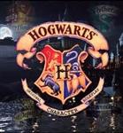 Seçmen Şapka Testi |Harry Potter- Daniel Radcliffe