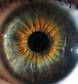 ¿Que Tan Hermosos Son Tus Ojos?
